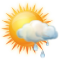 Sunny intervals with light rain shower
