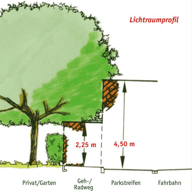 LIchtraumprofil (Grafik: Stadt Münster)